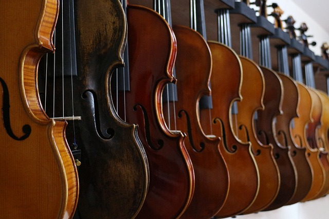 Petr's Violin Shop has been providing over 30 years of quality violins in Anchorage, Alaska.