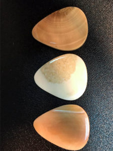 Custom designed guitar picks made from fossilized woolly mammoth tusks from Alaska